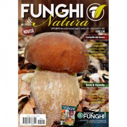 Funghi & Natura - n.1